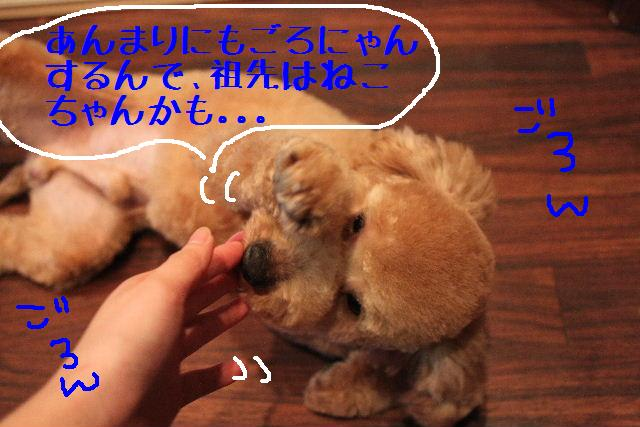 b0130018_14214990.jpg