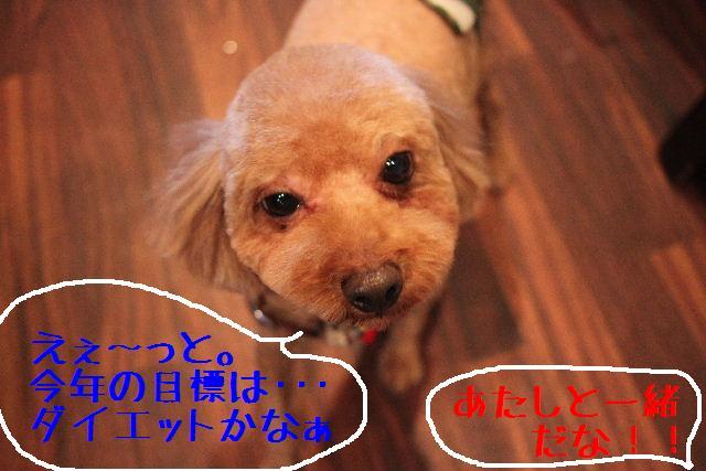 b0130018_14245020.jpg