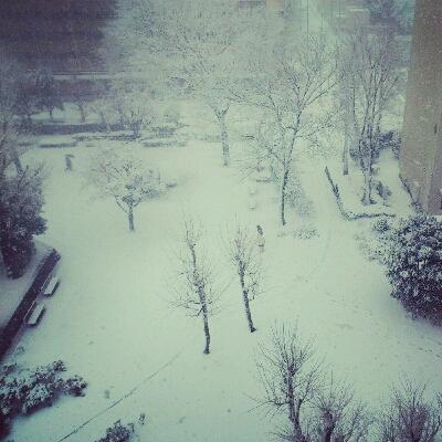 東京の大雪!_c0127029_14281355.jpg