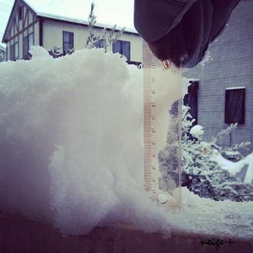 大雪とニットのあったか冬シュシュ♪ _f0023333_2118576.jpg