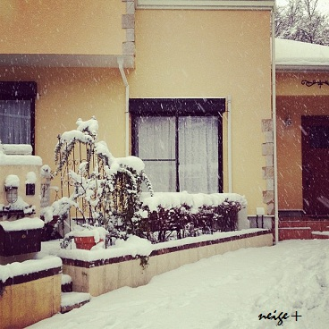 大雪とニットのあったか冬シュシュ♪ _f0023333_211971.jpg