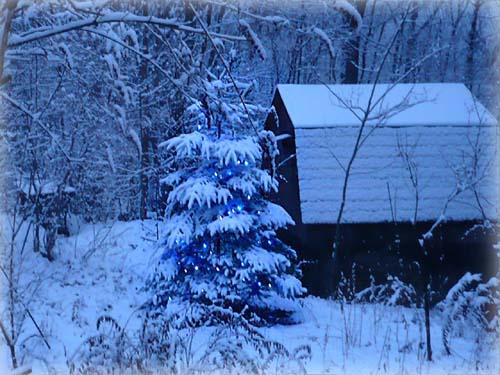 雪景色_d0127634_13151068.jpg