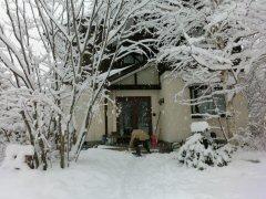 大雪です!_f0019247_1631715.jpg