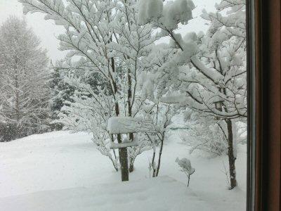 大雪です!_f0019247_16324189.jpg