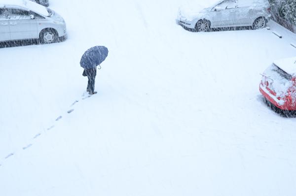 2013年1月の雪 01_a0003650_12372765.jpg