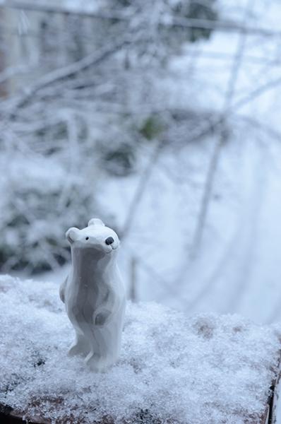 2013年1月の雪 01_a0003650_1237996.jpg