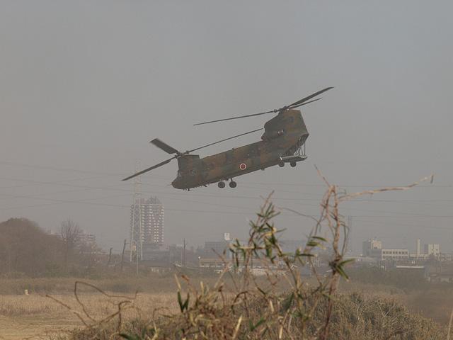 陸上自衛隊 第1空挺団 降下訓練始め その1 (1/13)_b0006870_184948100.jpg