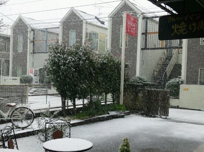 初雪。_a0078271_1136974.jpg