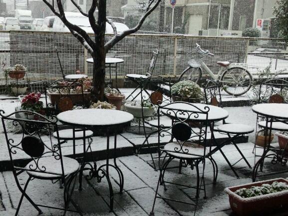 初雪。_a0078271_11372874.jpg