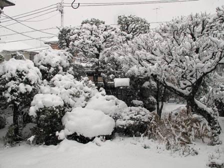雪の日は_a0077673_21531542.jpg