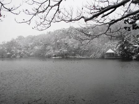 雪の日は_a0077673_2244554.jpg