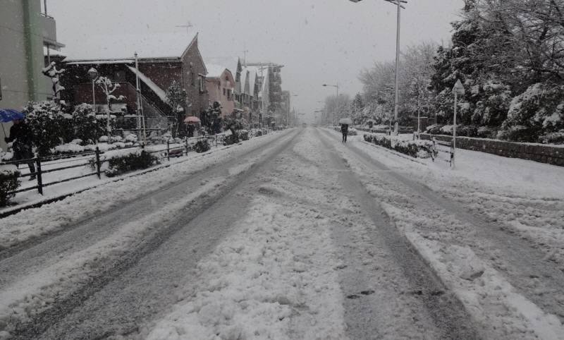 大雪の成人式_f0059673_18231672.jpg