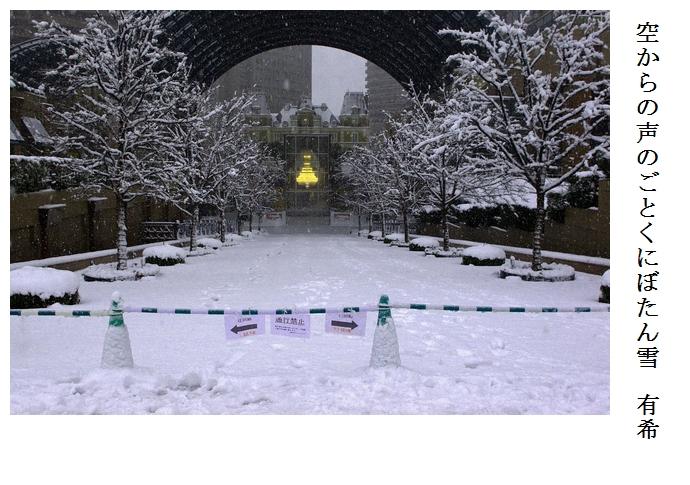 雪_a0248481_21321467.jpg
