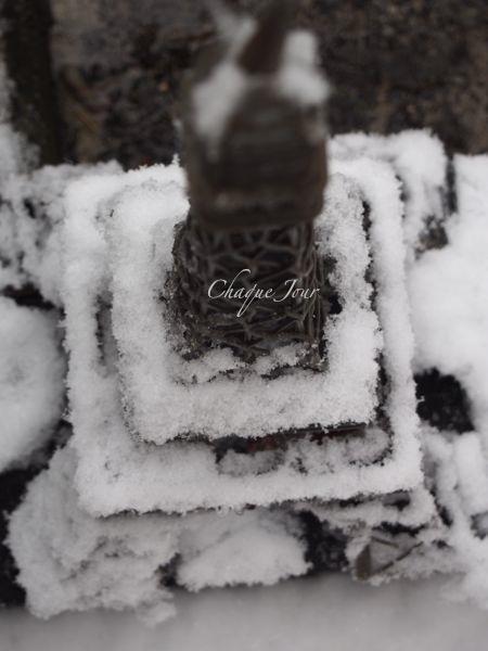 びっくりする程の大雪で007もこたつで休んでいます。_d0266681_1114192.jpg