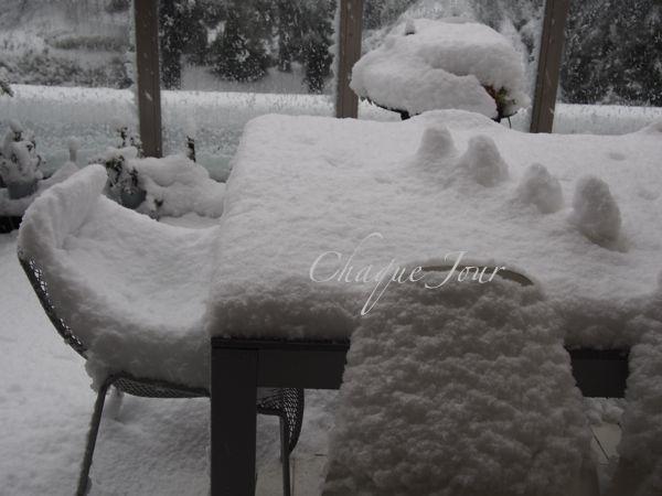 びっくりする程の大雪で007もこたつで休んでいます。_d0266681_1442948.jpg