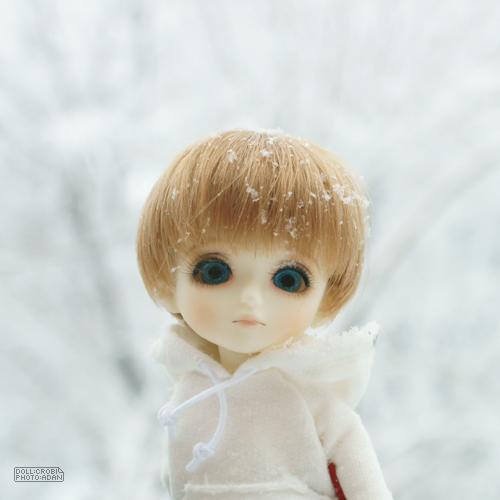 雪です!_a0024690_1633315.jpg
