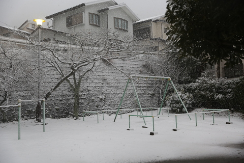 雪が降りました!_b0275998_230830.jpg