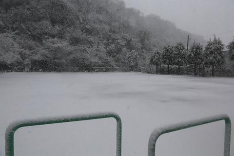 雪が降りました!_b0275998_2341402.jpg