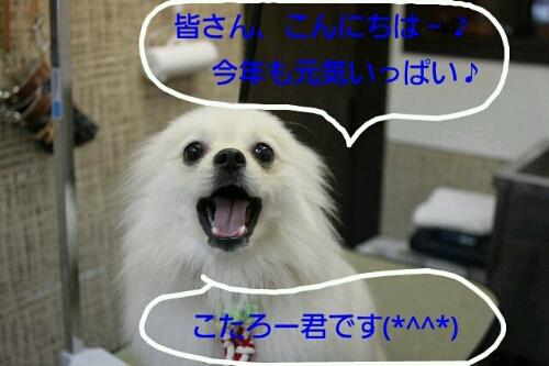 b0130018_23191416.jpg