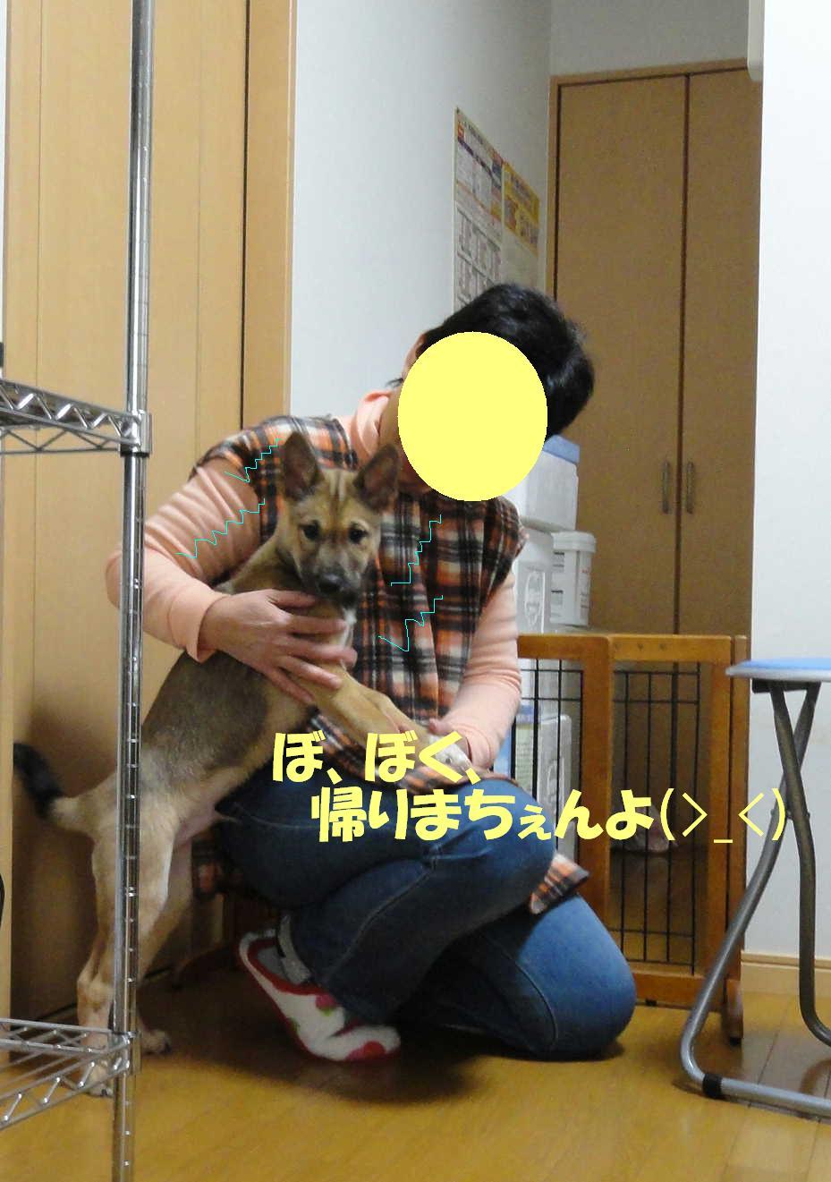 b0207320_159934.jpg