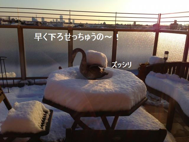 a0147921_15202098.jpg