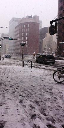 雪_d0118165_1753495.jpg