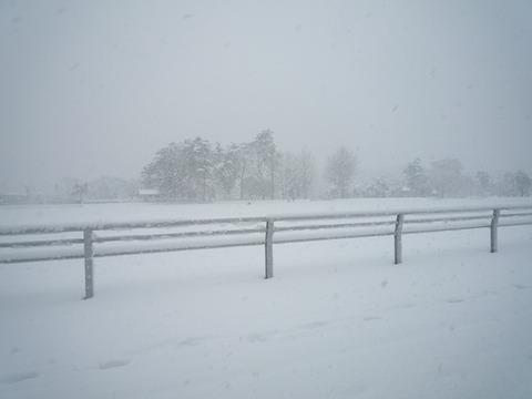 わが家の大雪の被害_e0232277_11553866.jpg