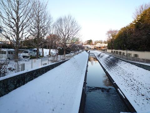 わが家の大雪の被害_e0232277_11591942.jpg