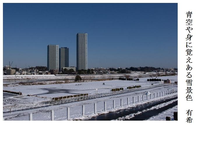 雪の翌日_a0248481_2151144.jpg