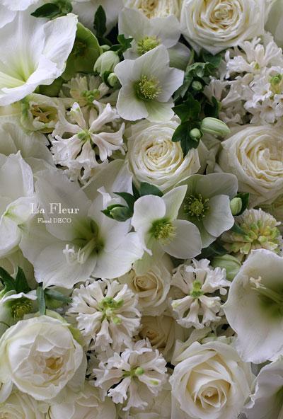大好きな白い春の花たち_f0127281_2359539.jpg