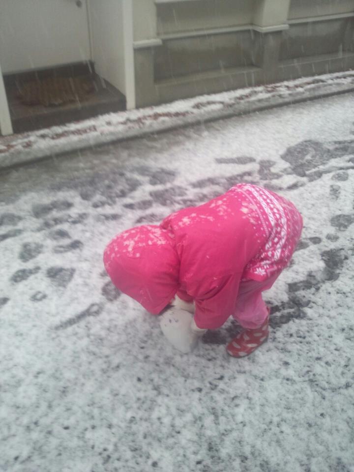 Snow day1_b0195783_101092.jpg