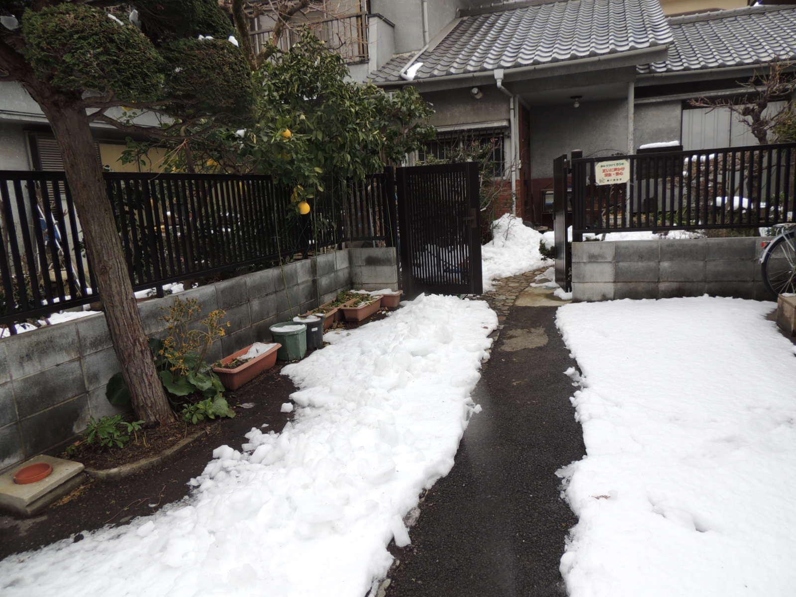 初雪です_e0094102_1025943.jpg
