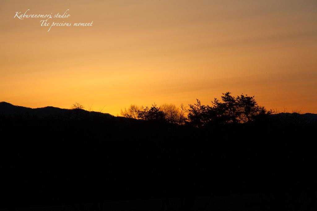 夜明け前の美しさ_c0137403_17145248.jpg