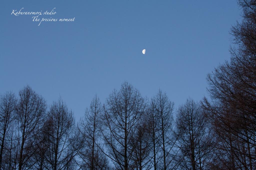 夜明け前の美しさ_c0137403_17164797.jpg