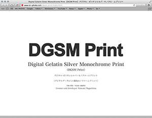 DGSM Print専用ICCプロファイルの公開情報です。_b0194208_12262552.jpg