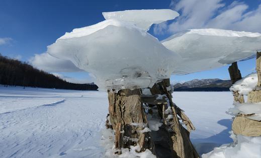 湖に咲く「きのこ氷」_d0019422_1015623.jpg