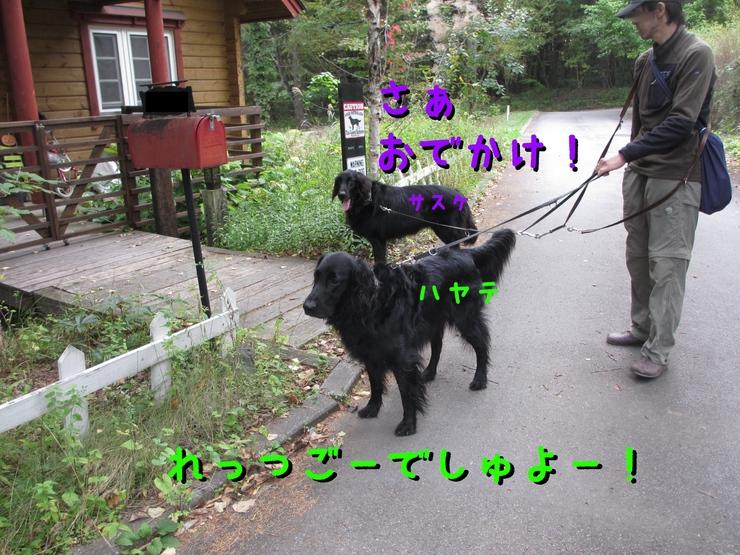 c0237824_9335735.jpg