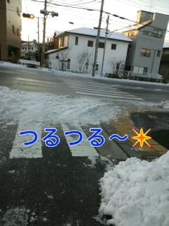 c0191646_8141752.jpg