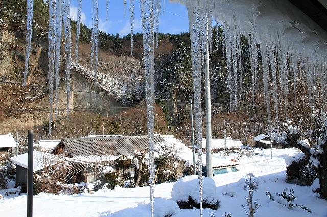 大雪でへとへとです・・・_b0100253_1613399.jpg