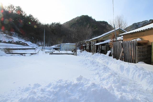 大雪でへとへとです・・・_b0100253_1623358.jpg