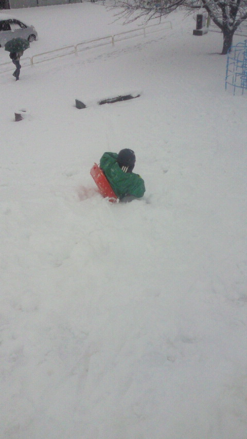 雪の日の遊び方☆ばばばあちゃんの「そりあそび」_e0160269_6212674.jpg