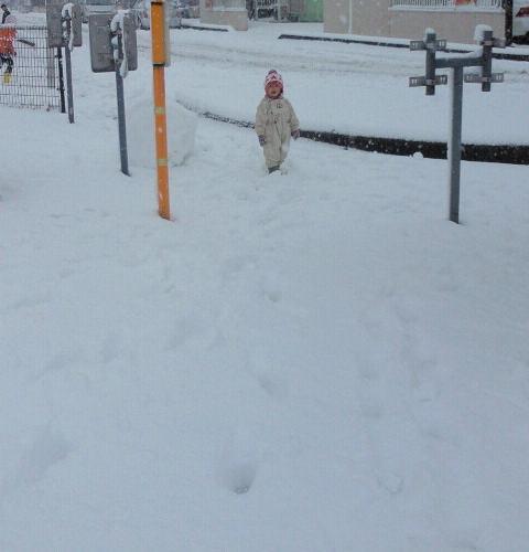 雪の日の遊び方☆ばばばあちゃんの「そりあそび」_e0160269_6301388.jpg