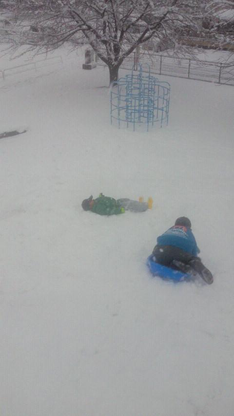 雪の日の遊び方☆ばばばあちゃんの「そりあそび」_e0160269_6343715.jpg