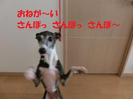 f0223972_703479.jpg