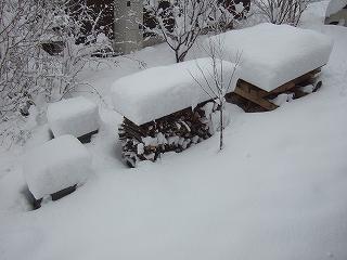 雪かき痛_a0085381_12253081.jpg
