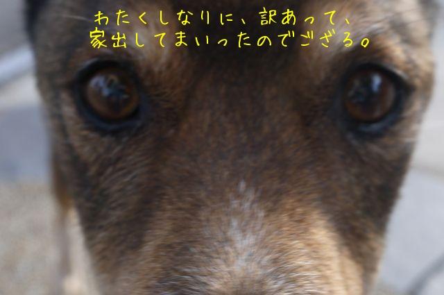 f0177261_2365971.jpg