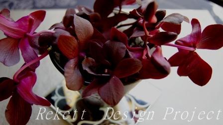 シックなボルドー&ブラックカラーのデンファレでフラワーアレンジ~_f0029571_1205373.jpg