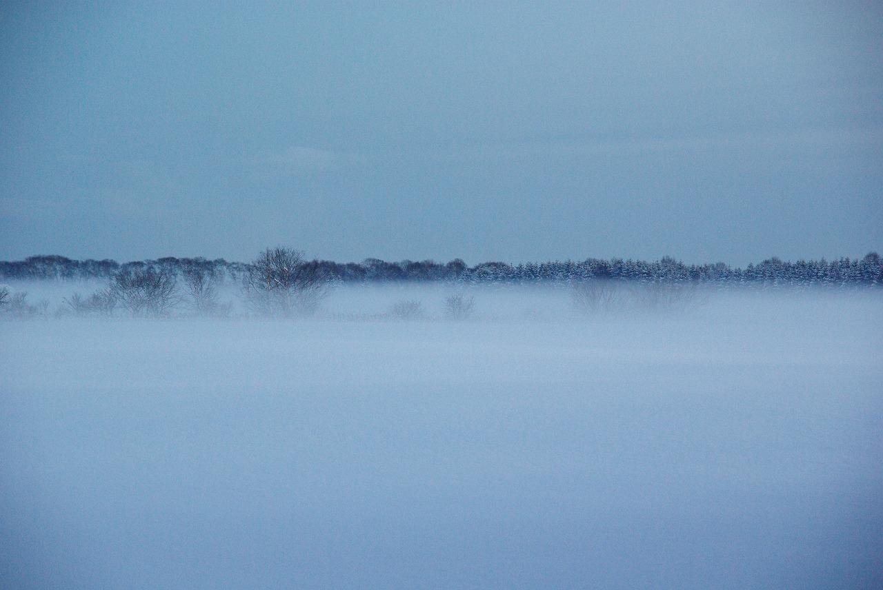 千歳川からの霧_a0107184_12276.jpg