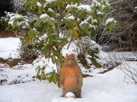 雪の お狸 さま_a0236300_17143574.jpg