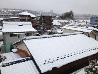 大雪でした_c0156804_8583435.jpg